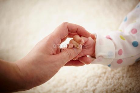 親子の手の写真素材 [FYI02054643]