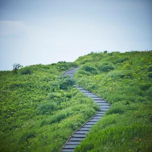 緑の野原と階段の道の写真素材 [FYI02054652]