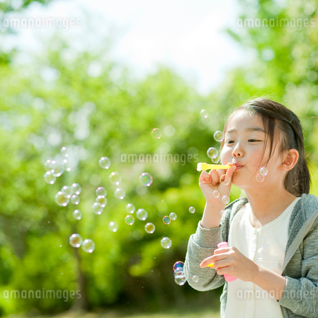シャボン玉で遊ぶ女の子の写真素材 [FYI02054706]