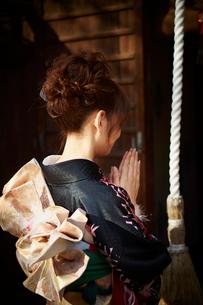 神社で手を合わせる振袖姿の女性の後ろ姿の写真素材 [FYI02054817]