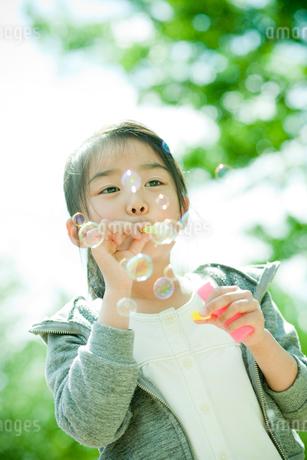 シャボン玉で遊ぶ女の子の写真素材 [FYI02054986]