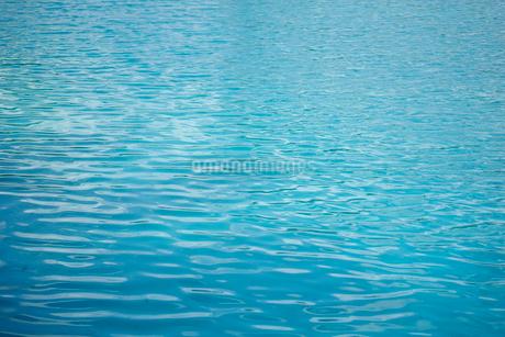 水面の写真素材 [FYI02055135]