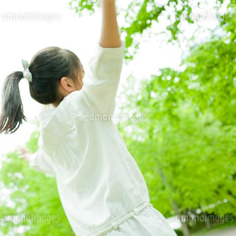 手を上げる女の子の写真素材 [FYI02055147]