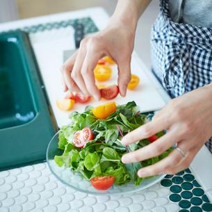 サラダを作る女性の手の写真素材 [FYI02055174]