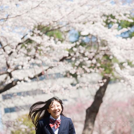 女子中学生と桜の写真素材 [FYI02055326]