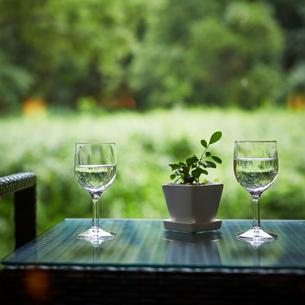 テーブルの上に置いた水が入ったグラスとプランターの写真素材 [FYI02055676]