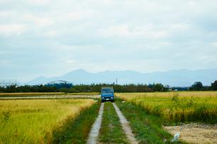 あぜ道とトラックの写真素材 [FYI02055784]