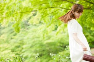 新緑と女性の写真素材 [FYI02055806]
