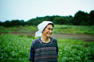 畑と笑顔の農婦の写真素材 [FYI02055814]