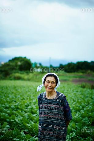 畑と笑顔の農婦の写真素材 [FYI02055827]