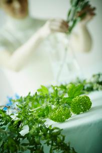 テーブルの上に置かれた花と花を活ける女性の写真素材 [FYI02055875]