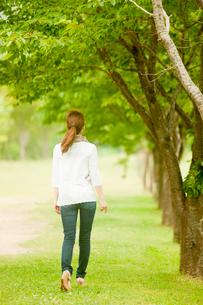 新緑の並木と女性の後ろ姿の写真素材 [FYI02055879]