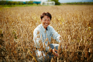 大豆畑の笑顔の農夫の写真素材 [FYI02055946]