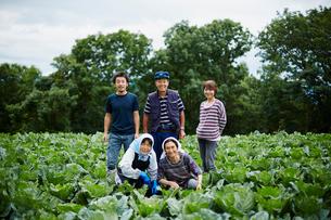 畑の中の農家ファミリーの写真素材 [FYI02056081]