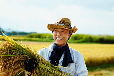 稲を抱える笑顔の農夫の写真素材 [FYI02056093]