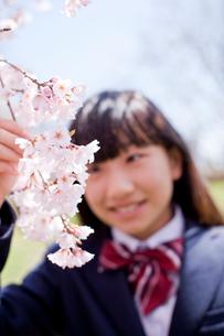 桜を見つめる女子中学生の写真素材 [FYI02056131]