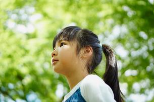 新緑と女の子の横顔の写真素材 [FYI02056180]