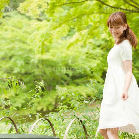 新緑と女性の写真素材 [FYI02056184]