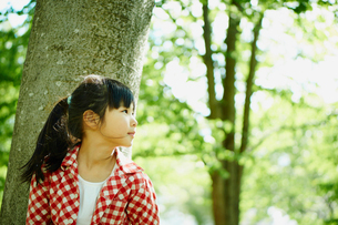 木の幹にもたれる女の子の横顔の写真素材 [FYI02056188]