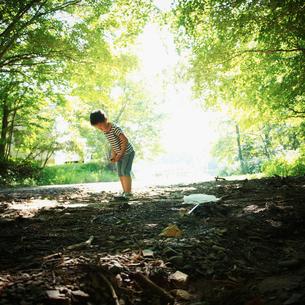 地面を見つめる男の子の写真素材 [FYI02056221]
