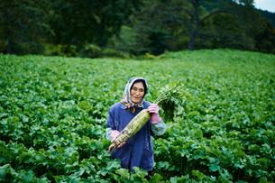 ダイコンを持つ笑顔の農婦の写真素材 [FYI02056283]
