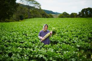 ダイコンを持つ笑顔の農婦の写真素材 [FYI02056286]