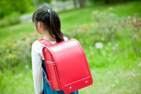 小学生の女の子の後ろ姿の写真素材 [FYI02056309]