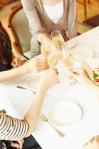 乾杯をする女性達の写真素材 [FYI02056390]