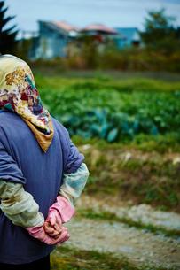 畑を眺める農婦の後ろ姿の写真素材 [FYI02056398]