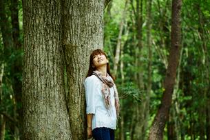 木にもたれる女性の写真素材 [FYI02056422]