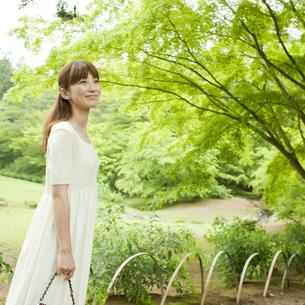 新緑を眺める女性の写真素材 [FYI02056426]