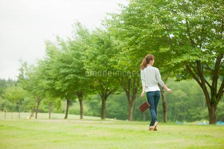 新緑の並木と歩く女性の写真素材 [FYI02056563]