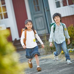ランドセルを背負って走る男の子と女の子の写真素材 [FYI02056602]