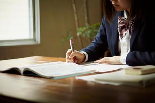 勉強をする女子学生の写真素材 [FYI02056638]