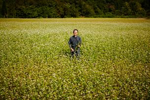 花咲くソバ畑に立つ農夫の写真素材 [FYI02056684]