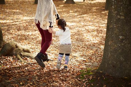 秋の公園で遊ぶ女の子と母親の写真素材 [FYI02056717]