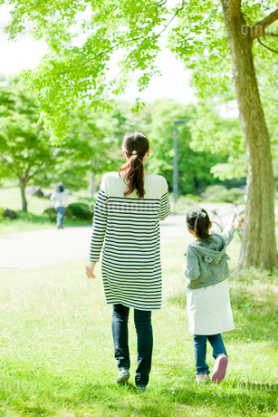 新緑の公園を散歩する女の子と母親の後ろ姿の写真素材 [FYI02056726]