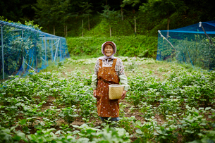 畑に立つ笑顔の農婦の写真素材 [FYI02056751]