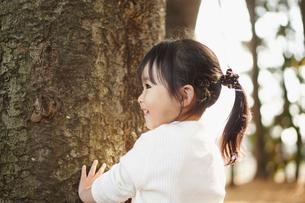 木の幹に触れる女の子の写真素材 [FYI02056755]