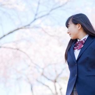 女子中学生と桜の写真素材 [FYI02056762]