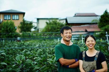 ナス畑の前に立つ笑顔の農家夫婦の写真素材 [FYI02056796]