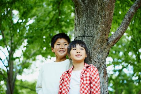 木の幹にもたれる笑顔の男の子と女の子の写真素材 [FYI02056947]