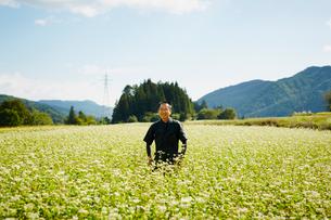 花咲くソバ畑に立つ農夫の写真素材 [FYI02056953]