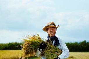 稲を抱える笑顔の農夫の写真素材 [FYI02056955]