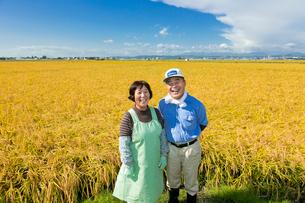 稲田と農家の夫婦の写真素材 [FYI02057012]