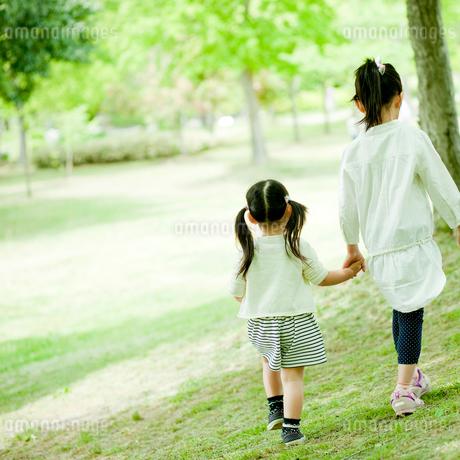 新緑の公園を歩く2人の女の子の後ろ姿の写真素材 [FYI02057045]