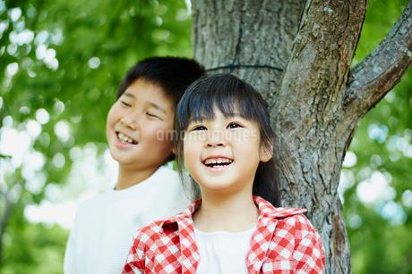 木の幹にもたれる笑顔の男の子と女の子の写真素材 [FYI02057197]
