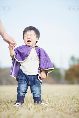 手をつなぎ泣く男の子の写真素材 [FYI02057251]