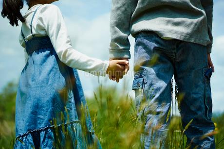 手をつなぐ男の子と女の子の写真素材 [FYI02057297]