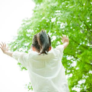 両手を上げる女の子の後ろ姿と新緑の写真素材 [FYI02057317]